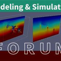 Modeling and Simulation Forum #7 Recording